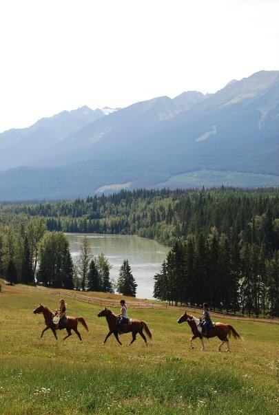 Ježdění na koních