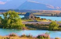 Menu - Novy Zeland