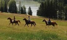 Pobyt na farme v Kanade