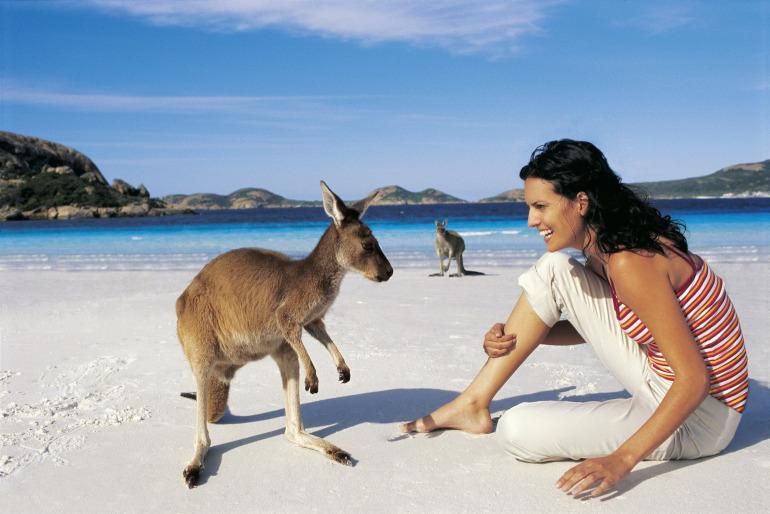 australie_klokan